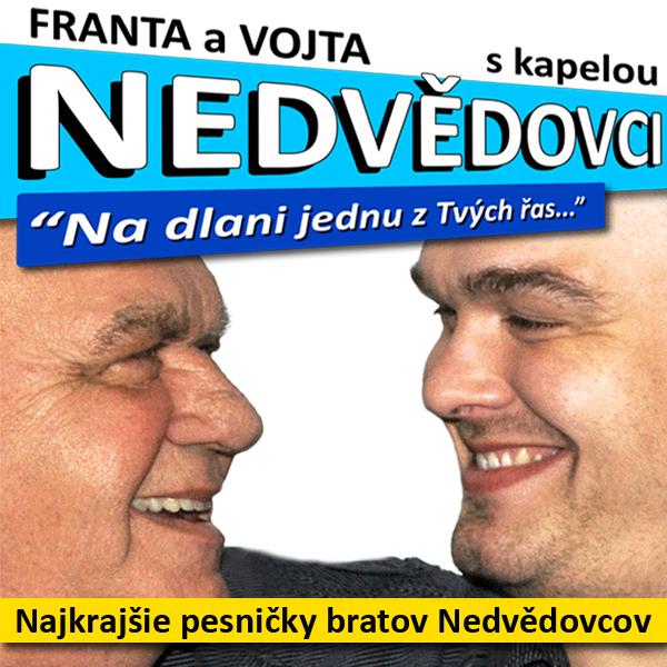 picture František Nedvěd a Vojta Nedvěd s kapelou