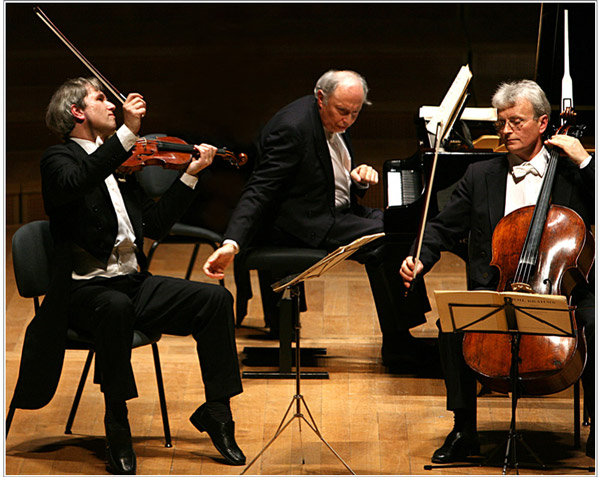 picture Guarneri trio