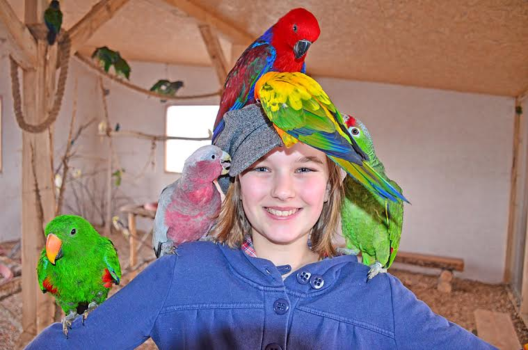 picture Mikuláš deťom, deti zvieratkám