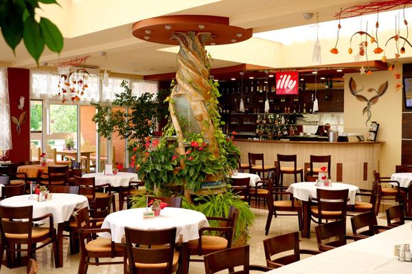 picture Hotel Barónka **** - Silvestrovská zábava