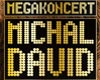 MICHAL DAVID - megakoncert