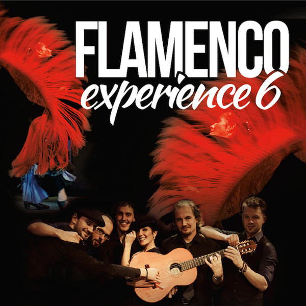 Flamenco experience six