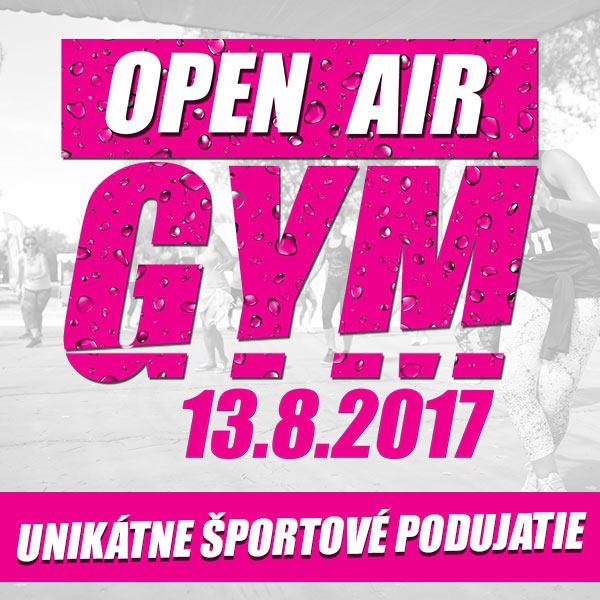Open Air Gym 2017