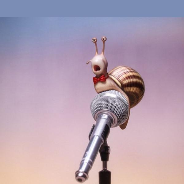 Spievaj - Filmový klub Kamel