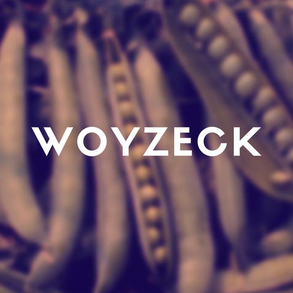 Kolektív / Büchner : Woyzeck