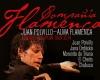 Compania Flamenca Juan Polvillo